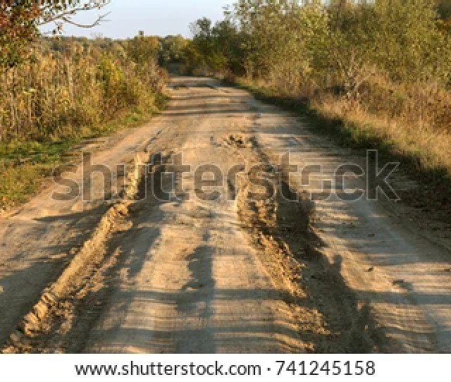 Rural Dirt Road In The Forest Russian Rural Landscape With An Empty Dirt Road