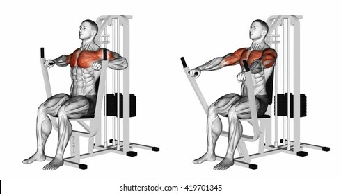 Seated Row Exercise Images, Stock Photos & Vectors