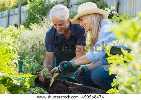 senior couple planting seedlings of basil in their vegetable garden happy mature man and smiling