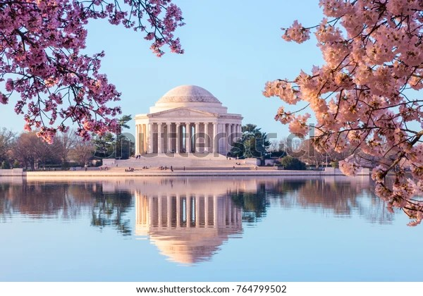 Sunrise illuminates the Jefferson Memorial during the Cherry Blossom Festival in Washington DC