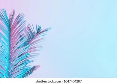 pastel background images stock