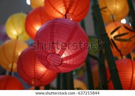 variety hanging lamps adorn
