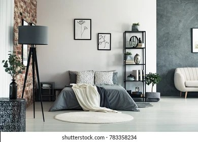 room interior rug images