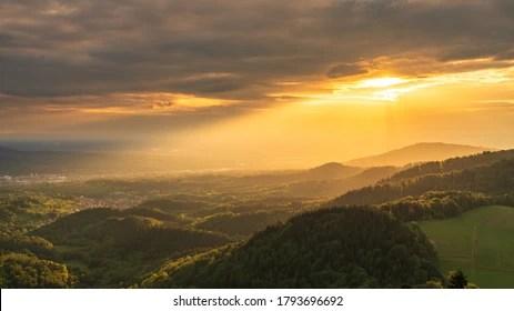 La torta foresta nera è un dolce goloso originario della germania. Foresta Nera High Res Stock Images Shutterstock