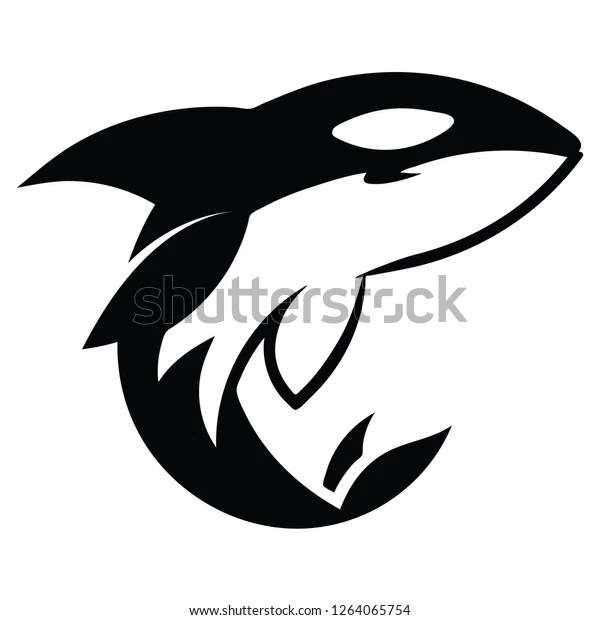 2d vector illustration orca