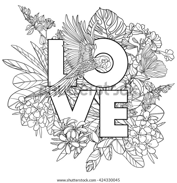 Adult Coloring Book Coloring Page Word Stock Vector