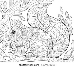 Squirrel Coloring Pages Images, Stock Photos & Vectors