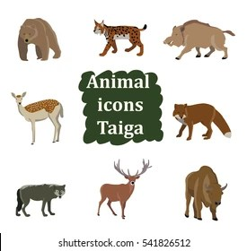 Use them in commercial designs under lifetime, perpetual & worldwide. Taiga Animals Images Stock Photos Vectors Shutterstock