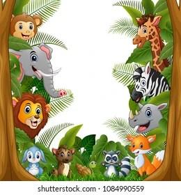 animal frame images stock