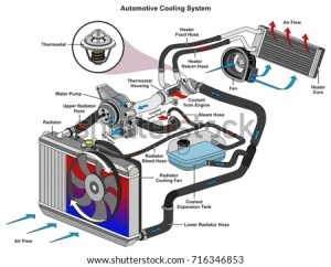 Automotive Cooling System Infographic Diagram Showing