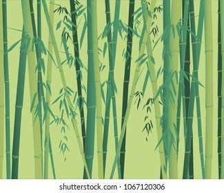 bamboo wallpaper images stock
