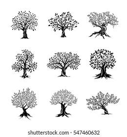 cork tree vector images