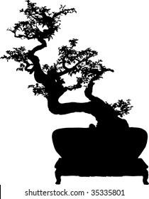 Bonsai Silhouette : bonsai, silhouette, Bonsai, Silhouette, Stock, Images, Shutterstock