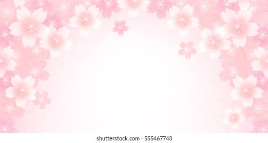 Pink Feathers Falling Wallpaper Pink Flowers Background Images Stock Photos Amp Vectors