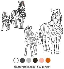 Cartoon Illustration Outline Vector Zebra Images, Stock