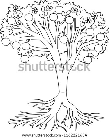 Coloring Page Apple Tree Root System Stock Vector (Royalty