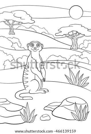 Coloring Pages Little Cute Meerkat Stands Stock Vector