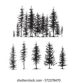 pine tree sketch images