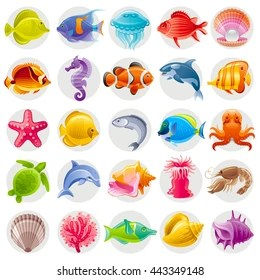 sea animal images stock