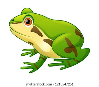 cartoon frog images stock