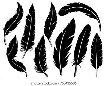 feather silhouette images stock