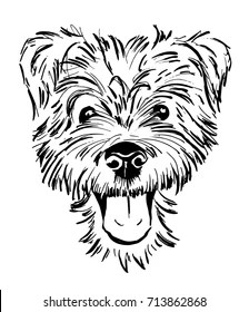 Dog Face Drawing : drawing, Drawing, Stock, Images, Shutterstock