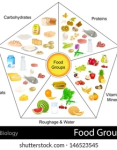 Easy to edit vector illustration of food group chart also carbohydrate protein and fat pictures royalty free images rh shutterstock