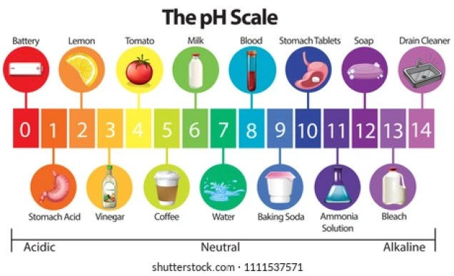 Ph Scale Images, Stock Photos & Vectors | Shutterstock