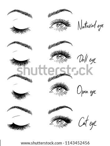 Eyes Eyelashes Types Eyelash Extensions Stock Vector