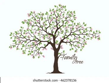 family tree images stock