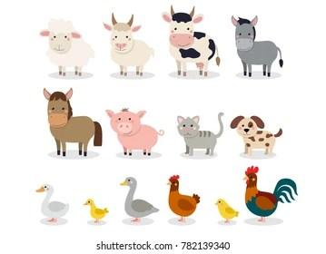farm animal images stock