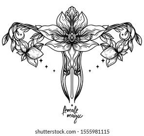 Female Clitoris Stock Illustrations, Images & Vectors