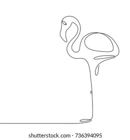 flamingo line drawing images