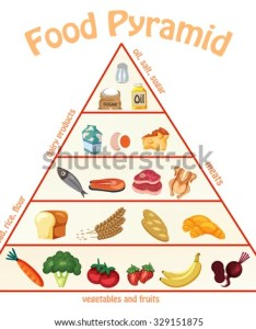 Food pyramid chart info graphics illustration vector also stock royalty rh shutterstock