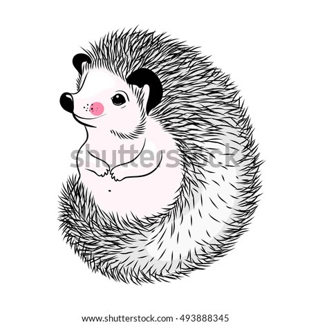 Funny Hedgehog Sketch Drawing Isolated On Stock Vector