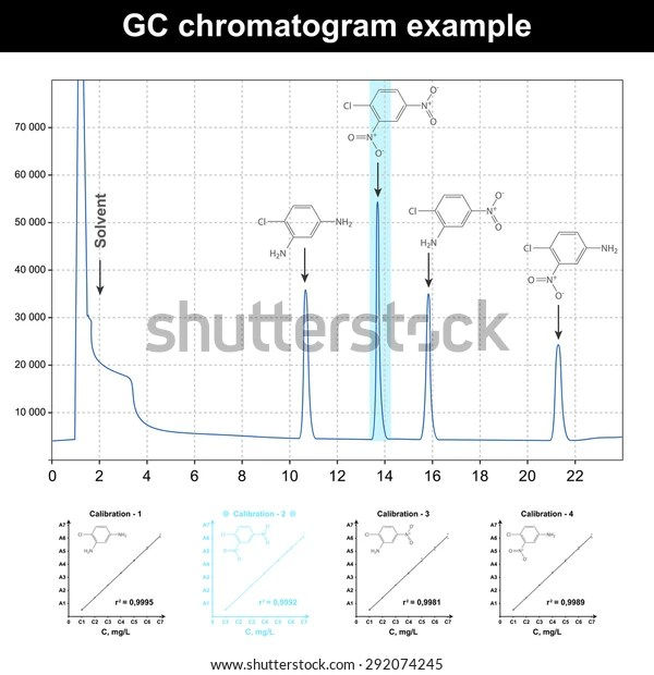 gas chromatography gc chromatogram