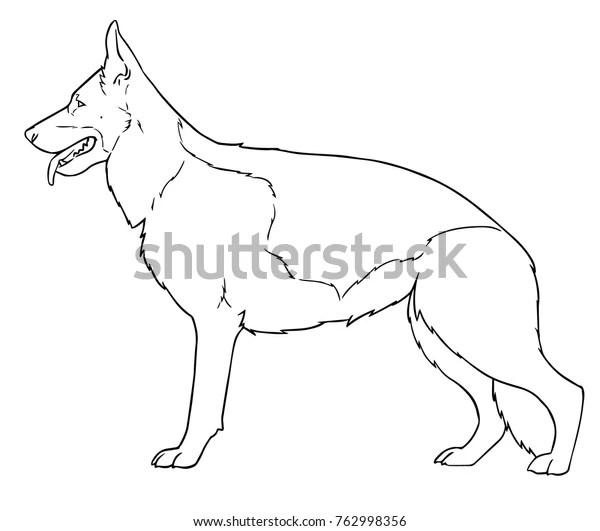 German Shepherd Dog Standing Coloring Book Stock Vector