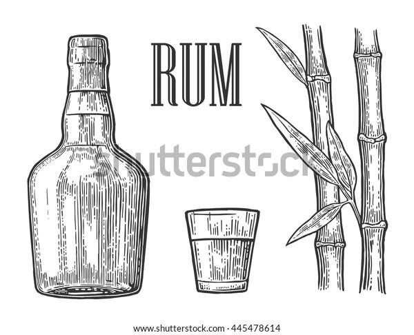 Glass Bottle Rum Sugar Cane Vintage Stock Vector (Royalty