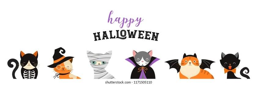 Halloween Cat Images Stock Photos Vectors Shutterstock