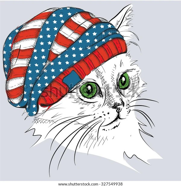 Hand Draw Cat Hat Vector Illustration Stock Vector Royalty Free 327549938
