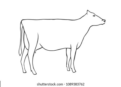 labelled diagram of a cow double pole light switch wiring for outline images stock photos vectors shutterstock hand draw vector illustration