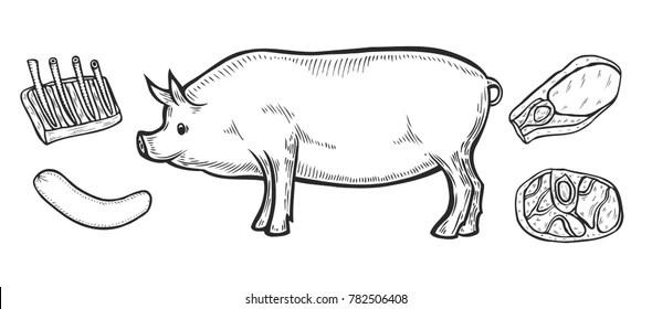 Similar Images, Stock Photos & Vectors of Hand drawn pig