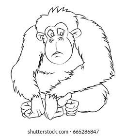 chimpanzee sketch images stock