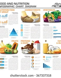 Health and nutrition food by group infographic chart diagram vector design template also images stock photos  vectors shutterstock rh