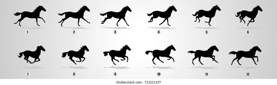 Running Horse Images Stock Photos Vectors Shutterstock