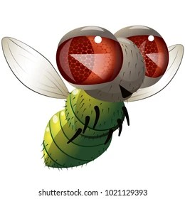 fly cartoon images stock