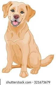 Chocolate Lab Cartoon : chocolate, cartoon, Labrador, Cartoon, Images,, Stock, Photos, Vectors, Shutterstock