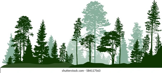 forest trees silhouette images
