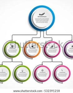 Infographic design organization chart template also stock vector royalty rh shutterstock