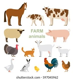 animales granja images stock
